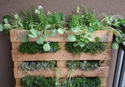 Garden Design With Just Like Martha: How To Make A Herb Garden.. With