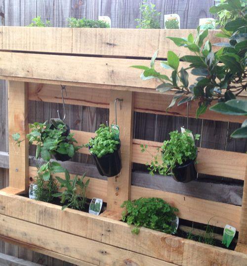 Herb garden - finished
