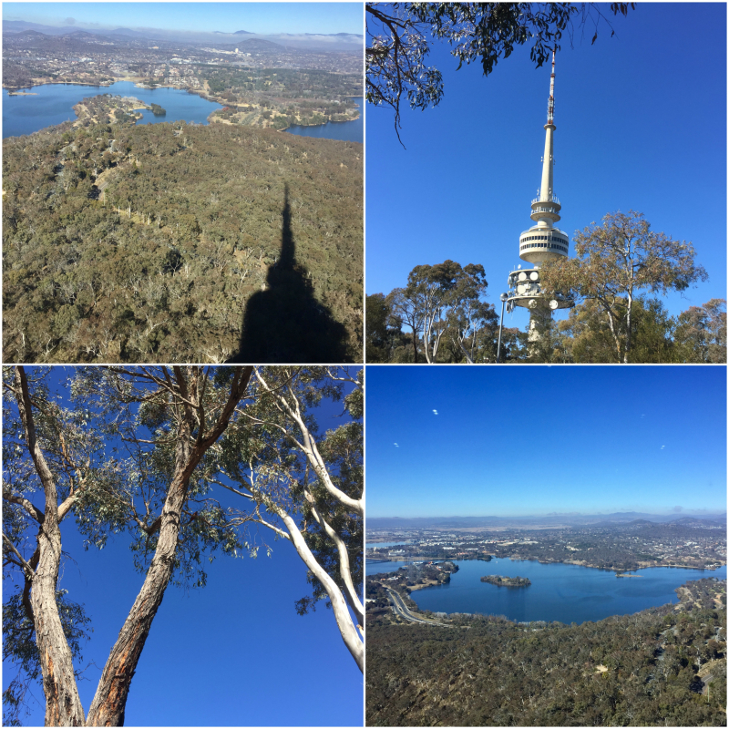Canberra - Black Mountain