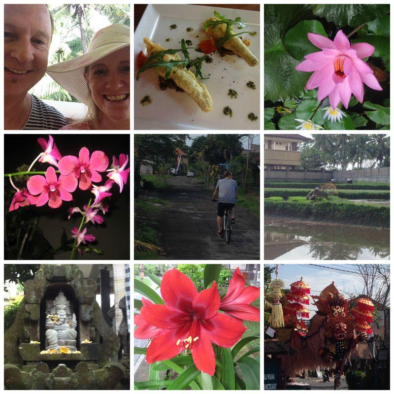 Bali collage 1